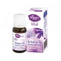 Árbol de Té Aceite Esencial Bio