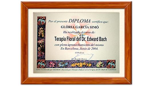 Diploma GBC SHOP.